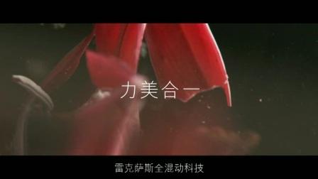 一帆映画影院映前广告电影数字拷贝DCP电影视频转换系列 (77)