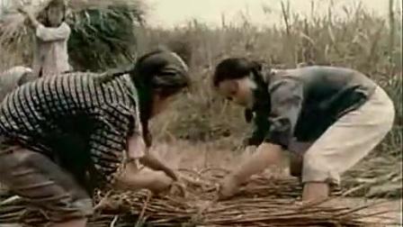 1969年知青纪录片《广阔的天地》.flv