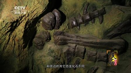 2017.03.17龙行天下 魅力嘉荫