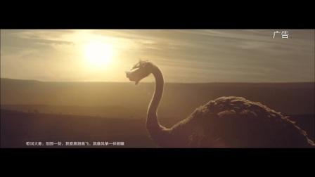 三星品牌广告鸵鸟篇
