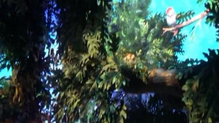 十二、上海迪士尼乐园《走进童话城堡》.mpg