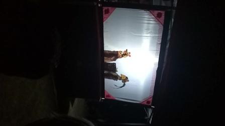 罗山皮影戏代表性传承人:陈雨伦先生在湖北演出视频片段