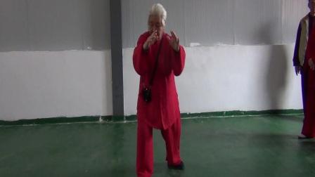 扎西老师传统杨式85式教学