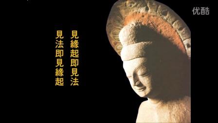 《佛在人间》德藏法师