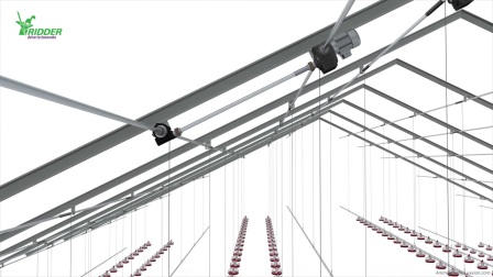 Ridder livestock lifting system double winch - 720