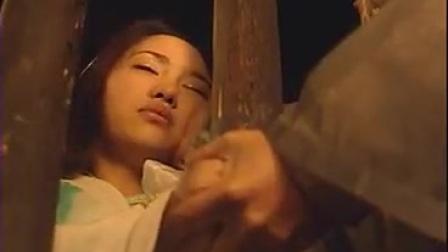 流星蝴蝶剑36