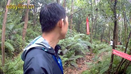 (创马)深圳马拉松2016.12.24