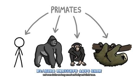 【Minute Earth】恐龙是如何被定义的?