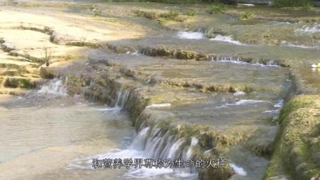 四川省广安邻水五华山欢迎您