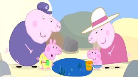 小猪佩奇之佩奇用小水桶救了小鱼