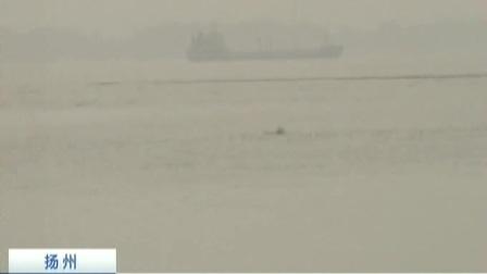 长江瓜州段再现江豚种群 江淮生态大走廊江豚数量逐步上升 170510 新闻空间站