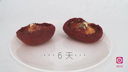 西红柿变质