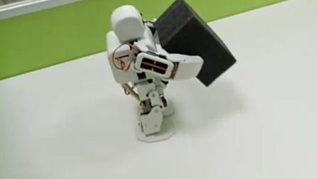 四博智联人形机器人ViVi