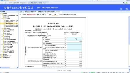 12-企业所得税月(季)度和年度纳税申报表(B类)