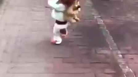 【联创社 孙斌】超级泰迪狗背书包上学有模有样02