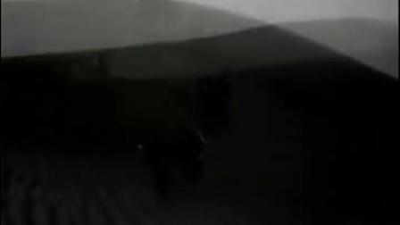 沙漠追匪记_1959