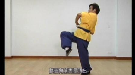 北螳螂套路 螳螂出洞 教学 周宝富 台湾功夫龙 第一段/共五段