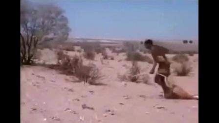 两个非洲土著人徒手从两只豹子嘴里抢走羚羊, 太可怕了