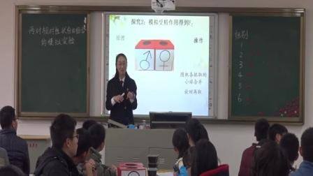 高中生物《两对相对性状自由组合的模拟实验》(湖北省中学生物实验教学技能比赛暨实验教学研讨会)