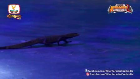 泰国综艺超恐怖啊! 把脚伸进有鳄鱼、毒蛇的箱子