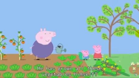 粉红猪小妹动画片猪爷爷做了一桌好吃的可乔治什么都不爱吃