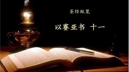 以赛亚书 11