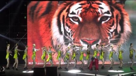 2017年茂名市排舞电视大赛决赛《再向虎山行》茂南区排舞队