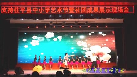 2017茌平县中小学艺术节振兴中学专场