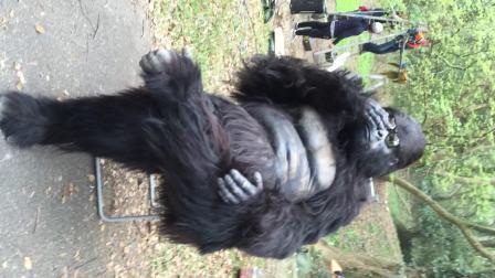 AJ特效化妆工作室制作超仿真真人穿戴大猩猩