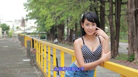 九九女儿红-陈少华 经典老歌 【八里河】