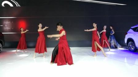 2017-深港澳车展表演随拍