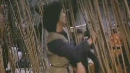台湾武侠【十八羅漢拳】国语中字_高清