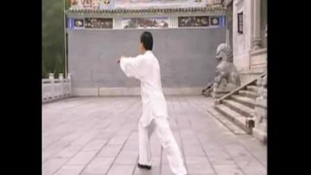赵幼斌85式杨式太极拳(音乐:一帘幽梦)