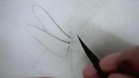 李晓明工笔画葡萄草虫001