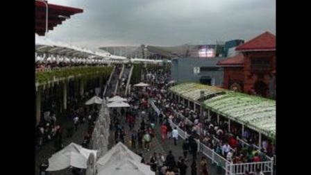上海世博图片