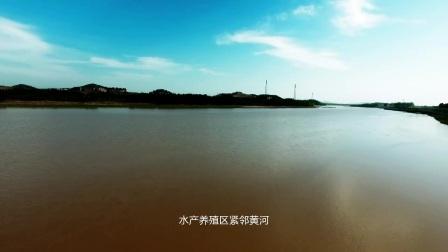 《绣青黄河鲤鱼》----山东圣土影视文化传媒出品