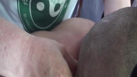 达摩第一天中医绝技视频
