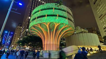 Urban Tree - Vivid Sydney 2017