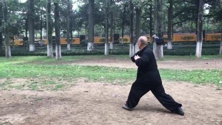 贾老师2017年6月螳螂拳八肘