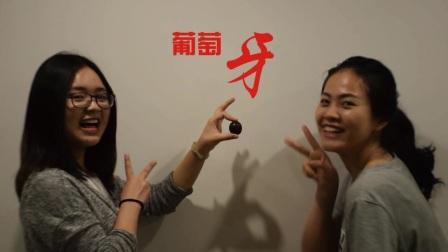 2017年5月国际汉语教师志愿者赴大洋洲欧洲培训班4班newstar结业典礼视频