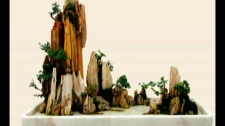 山水盆景制作视频学习石头盆景制作