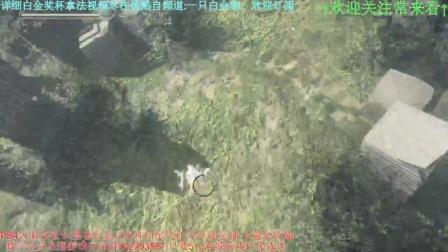 【天哥直播】尼尔:机械纪元白金奖杯视频攻略10