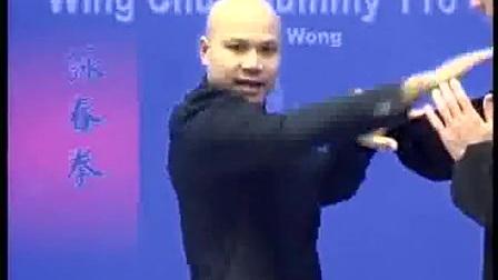 Michael Wong 咏春教学--木人桩116式(1)_标清