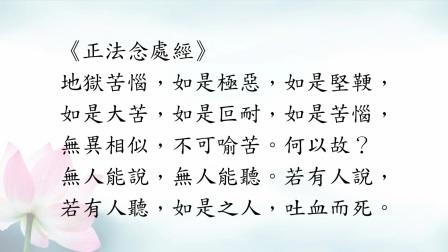 慧净法师-净土宗的核心教理(上集)