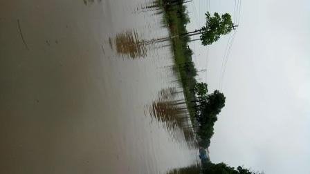 兰溪有满大水咯