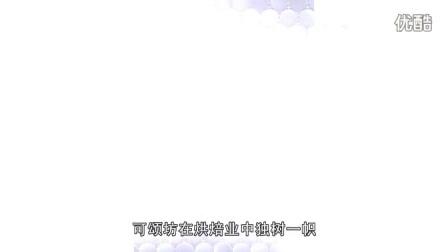 《O2O时代》第8期:可颂坊_高清