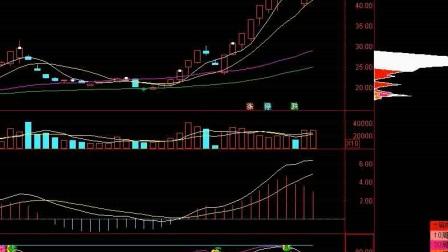 股票入门知识普通股和优先股的区别 (2)
