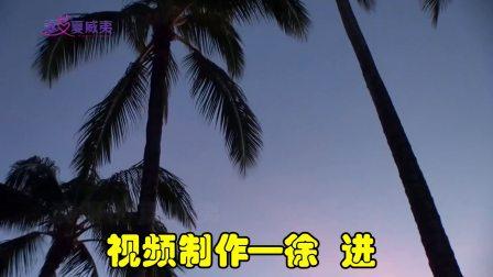 夏威夷吉他徐进—你就是幸福