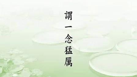 《了凡四训》净空法师8