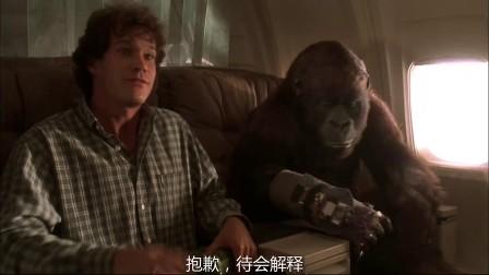 刚果惊魂 与母猩猩同乘飞机 美女惨遭攻击
